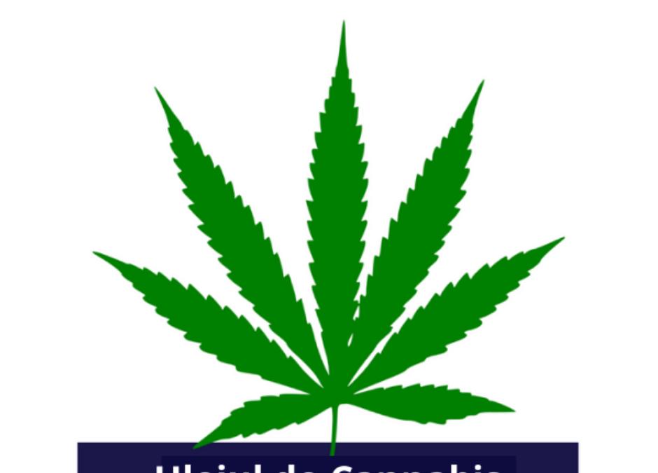 Uleiul de cannabis